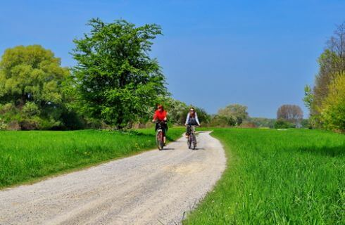 A couple ride bikes down a dirt path in a green meadow with trees.
